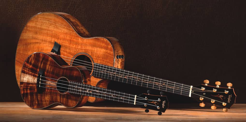 Taylor Guitars Choses Amsterdam As Their Base To Reach Out Europe