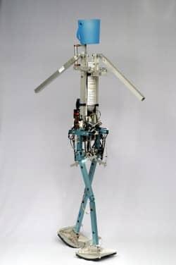 Blog-Denise robot