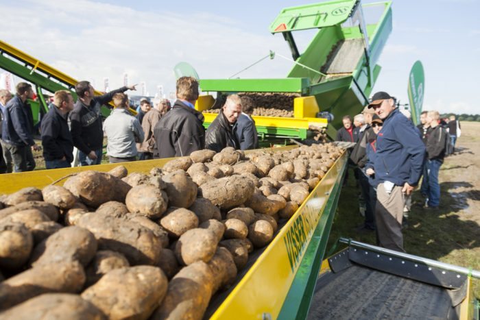 Food security is a priority theme within the Dutch government's development cooperation policy, and the potato is a key element in addressing nutrition in developing countries.
