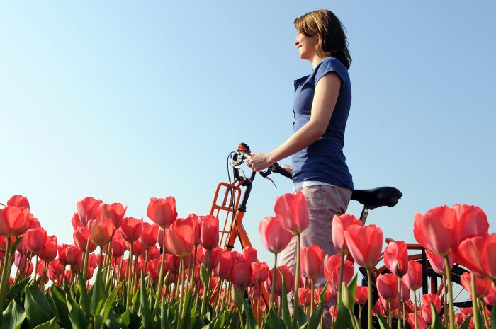 Woman in field of tulips