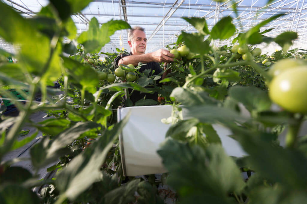 Agriculture Research and Development in Europe