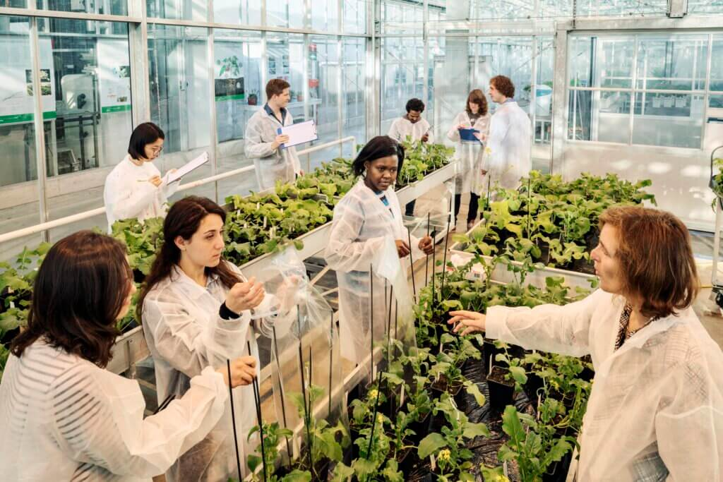 Invest in Holland: The Netherlands Food Valley