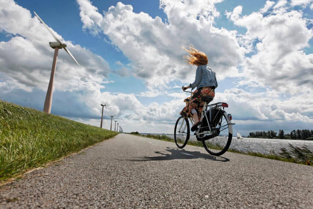 Dutch sustainability