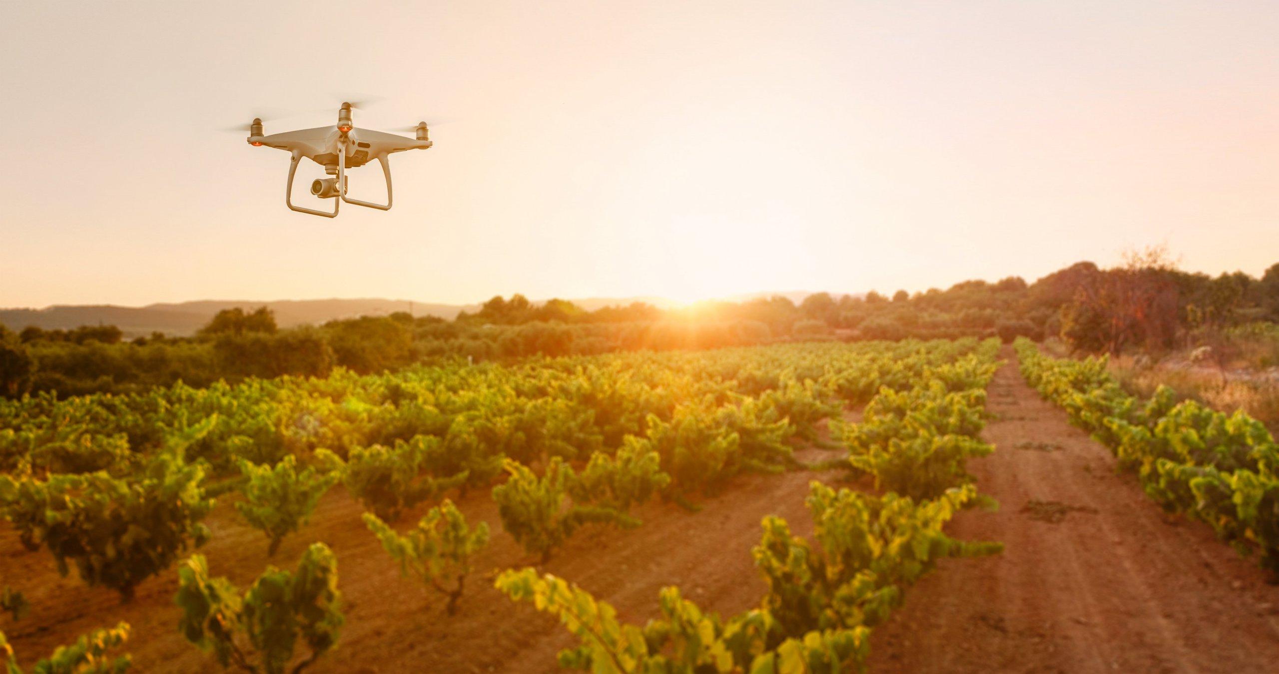 Agtech drone in the open field
