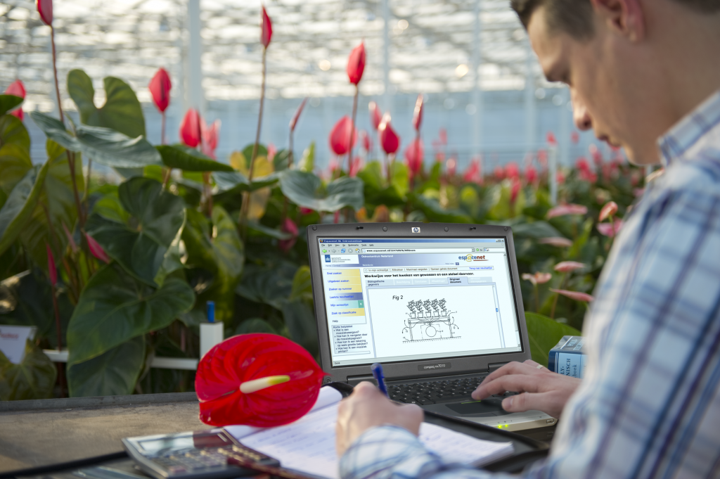 agtech monitoring plant growth in greenhouse